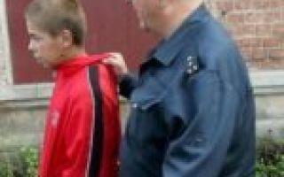 Особенности мелкой кражи – состав преступления, квалифицирующие признаки и ответственность