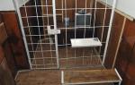 Тюрьма «Кресты» – история места, основные факты и режим заключенных