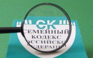 Статья УК РФ за неуплату алиментов: уголовная ответственность и административное наказание неплательщика