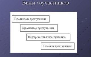 Понятия соучастия в преступлении: состав и ответственность по УК РФ
