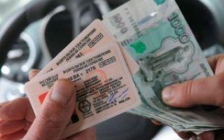Поддельные права: меры наказания и штрафы за покупку