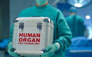 Незаконная трансплантация органов человека: состав преступления и ответственность по УК РФ