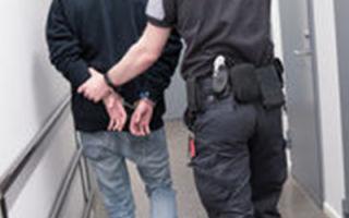 Что делать, если украли номера с машины: распространенные схемы кражи