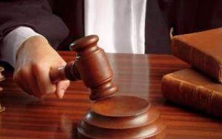 Мелкое хулиганство: состав преступления, виды и особенности наказания