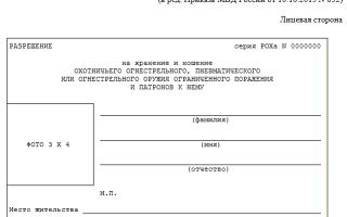 Незаконное хранение оружия – ответственность по УК РФ и состав преступления