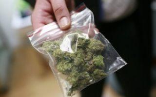 Ответственность за распространение наркотиков – статья УК РФ и состав преступления
