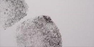 Статья 151 УПК РФ, по каким признакам определяется подследственность преступлений