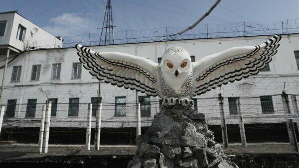 Колония «Полярная сова» – история знаменитой ИК и условия содержания в ней