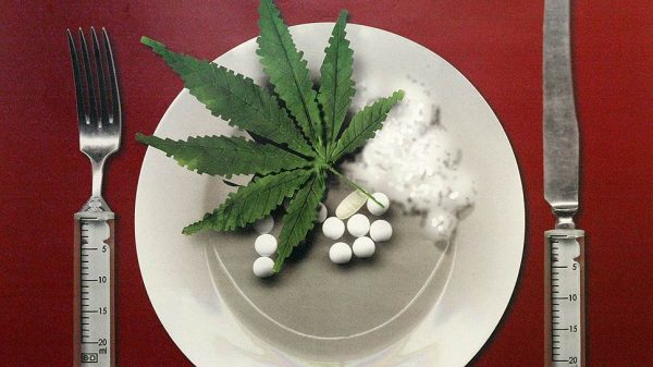 Ответственность за распространение наркотиков – статья УК РФ, состав преступления