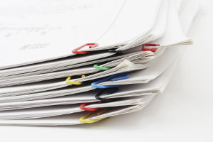 Какие документы нужны для освобождения по УДО – полный перечень