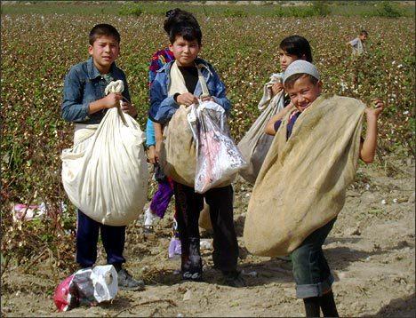 Детский труд – в каких случаях и на каких условиях возможен, ответственность по УК РФ