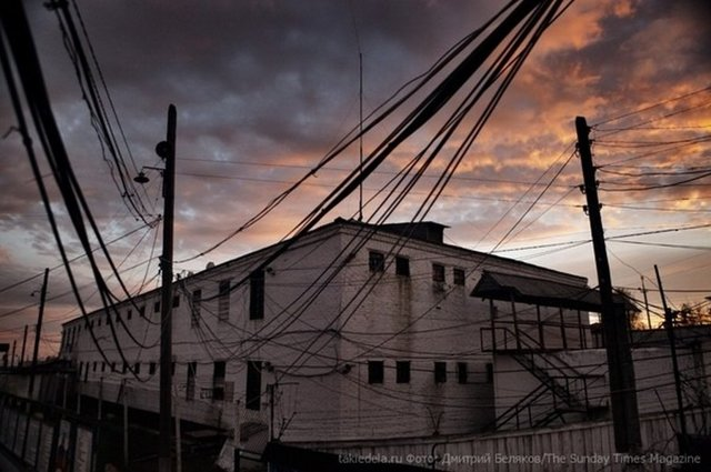 Чёрный беркут – исправительная колония особого режима, её история, условия содержания и местонахождение
