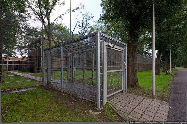 Одиночная камера в тюрьме – за что сажают, как выглядит, фото